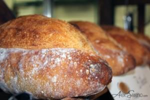 Pains - La Bête à pain